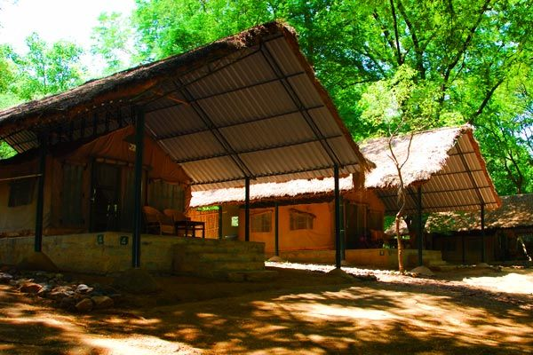 image of Jungle Lodges Galibore